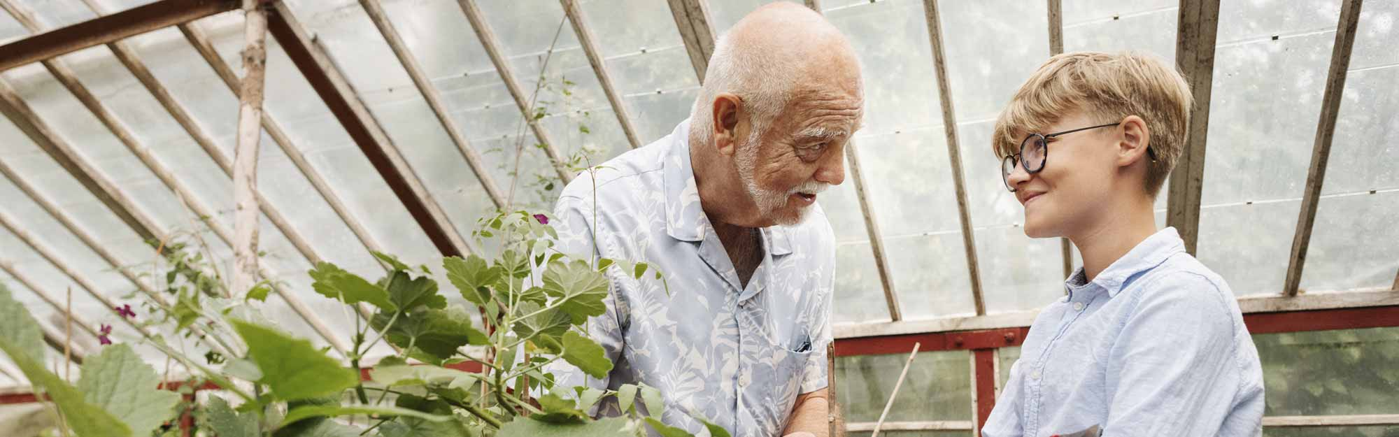 Senior and child working in the greenhouse